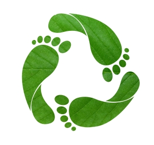 green-footprint